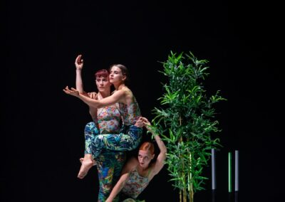 Futuro Festival | Teatro Brancaccio | C&S | Ufficio Stampa Signorelli CLOROPHILIA